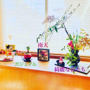 【玄関レイアウト】南天やガジュマルなど縁起物をたくさん飾っている玄関インテリア!!
